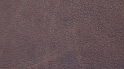 p-916-harness-chocolate-400x225.jpg