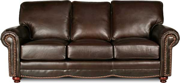 Brown-Leather-Sofa-Traditional