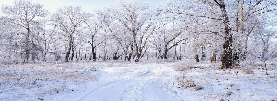 winter-landscape-1